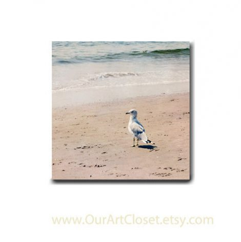 Beach canvas, seagull bird photograph neutral wall decor 12x12, 16x16 gallery wrapped canvas, beige teal grey nautical wall art pale coastal