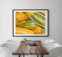 Vegetable print, kitchen art decor, squash zucchini veggie picture, farmers market photography print, kitchen wall art print, yellow green