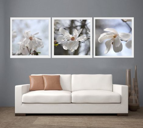White magnolia pictures, white flower photography print set of 3 prints 12x12, 20x20 floral nature wall art, cottage chic bath bedroom decor