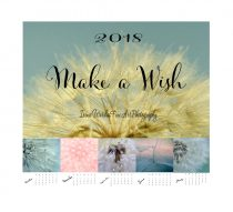 2018 calendar,  dandelion photography calendar, fine art botanical calendar nature photo calendar, 5x7, 4x6 calendar with easel, make a wish