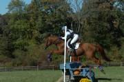 Radnor Hunt Horse Trials 2012