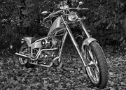 Chopper 2 ps BW..