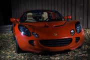 Lotus front 2