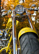 Yellow Harley f..