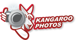 Kangaroo Photos