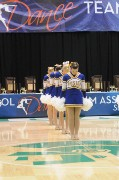 Greenfield Central HS - Pom