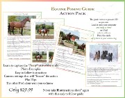 Equine Posing Guides