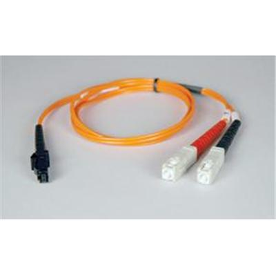 Tripplite Patch Cable - 10 Ft