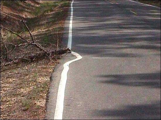 Redneck Road Worker
