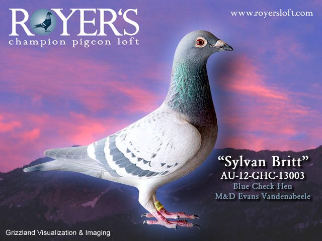Sylvan_britt