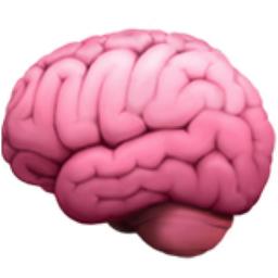 Brain Emoji U 1f9e0