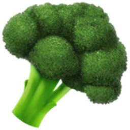 Broccoli Emoji U 1f966