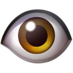 eye emoji u 1f441