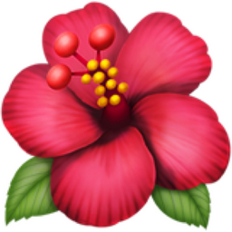 Hibiscus emoji u1f33a emoji brief mightylinksfo