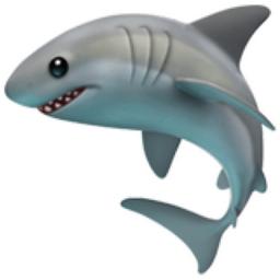Landon James - @landonjxmes - Page 3 Shark