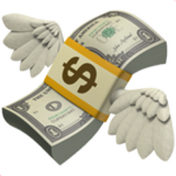 Money With Wings Emoji U 1f4b8