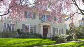 Great-house-amazing-trees