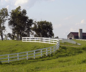 Top Ten Reasons for Moving to Lexington Ky