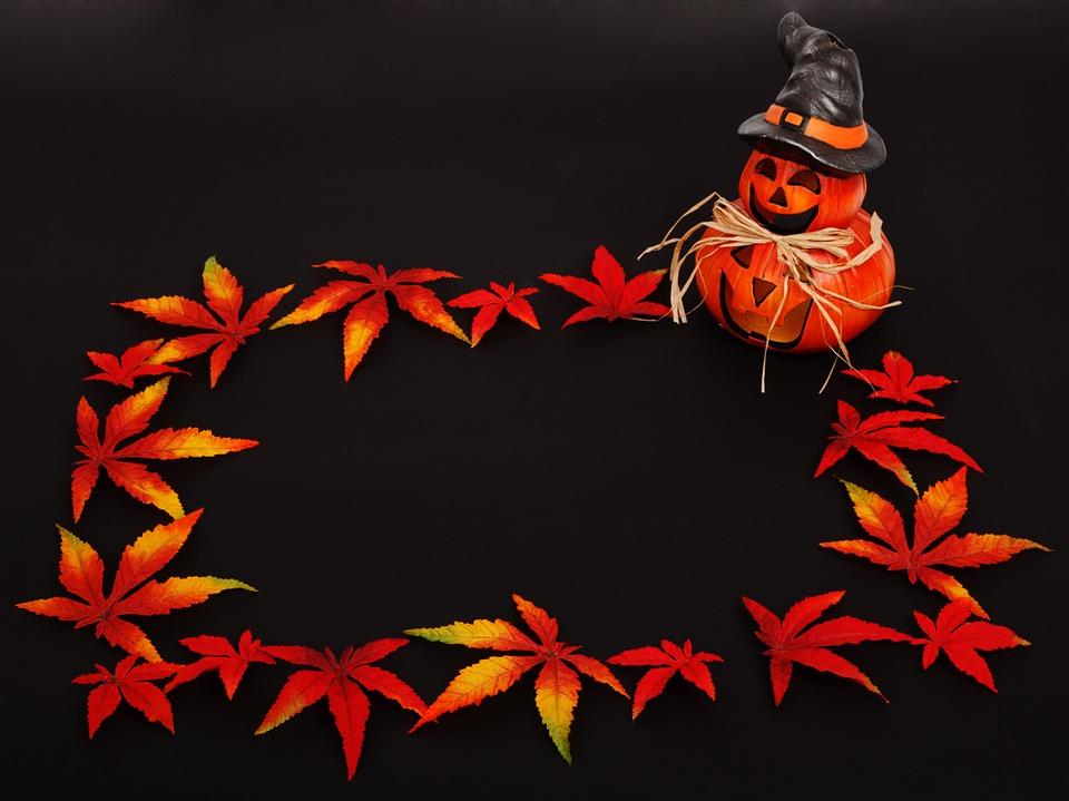 pumpkin-16977_960_720