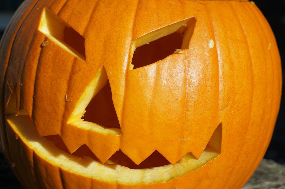 pumpkin-1753119_960_720