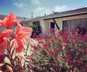 Just Sold | Sweet Goleta Home