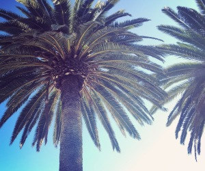Santa Barbara Real Estate Market - September 2016