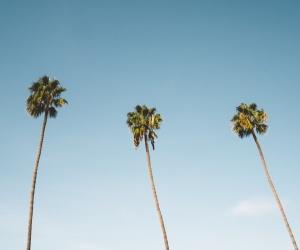 February 2017 - Santa Barbara Real Estate