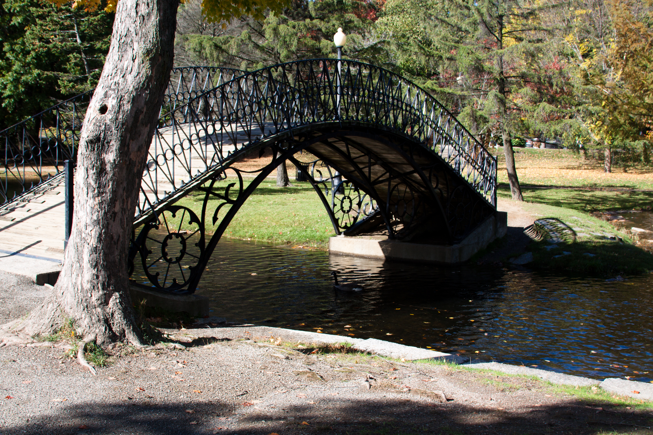http://s3.amazonaws.com/placester-wordpress/blogs.dir/7398/files/2014/02/Worcester_Massachusetts_Elm_Park_Iron_Bridge-190600.jpg