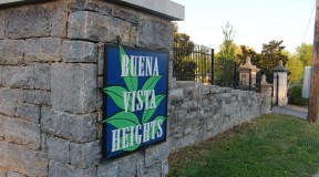 buena-vista-heights-grass