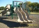 Brown - Singleton Park