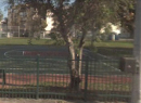 Tatum Park