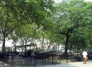 De Witt Clinton Park
