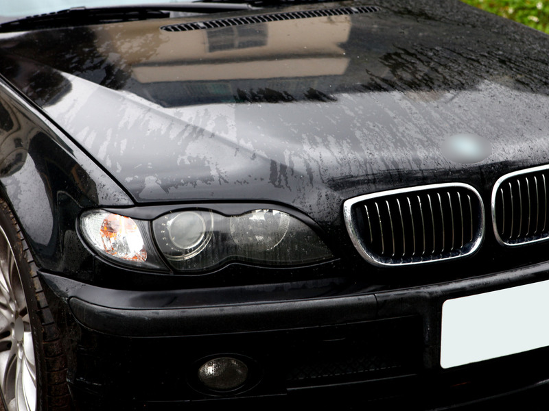 BMW E46 02-05 SEDAN BROWS LIDS EYELIDS EYEBROWS