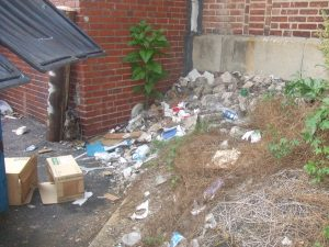 Trash piles build up in the vacant lots along Kensington Avenue