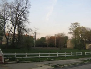 With spring weather, vacant lots take on a slightly nicer appearance.