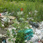 Many vacant lots are covered in trash, which bring animals and bugs.