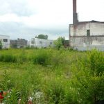 Vacant lots such as this one needs cleaning up in Port Richmond.