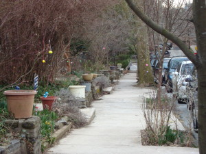 Residents take great pride in their block and put in every effort to make it special.