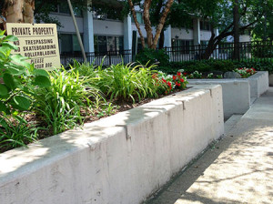 """A """"No Skateboarding"""" sign is placed across the street of Ruth Stewart's home where skaters used to frequent prior to Paine's Park completion."""