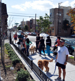 Members of the surrounding community bring their dogs to Julian Abele Part to meet new friends.