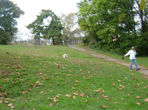 Many Olney residents can be seen walking their pets throughout Fisher Park