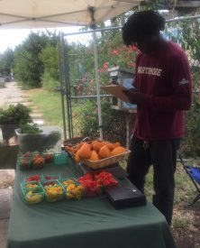 Alkebu- Lan Marcus is taking inventory of the various produce available at the Farmer's Market.