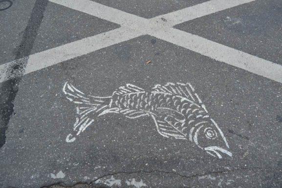 jablonowskijuliafall2016fish-1