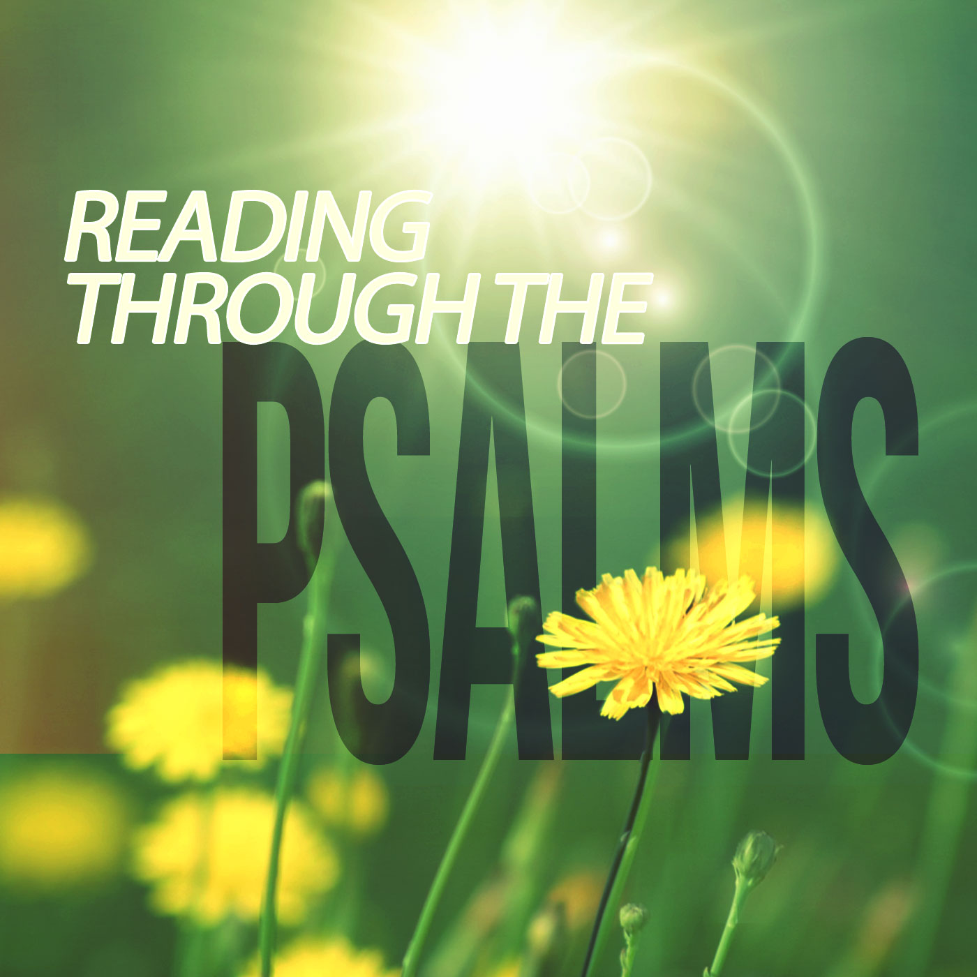 Reading Through the Psalms