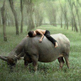 Fabulous Photography by Dewan Irawan