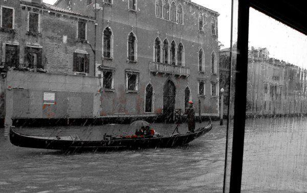Venice, Italy By Bardia Azizi
