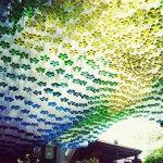 Soda Canopy by Garth Britzman