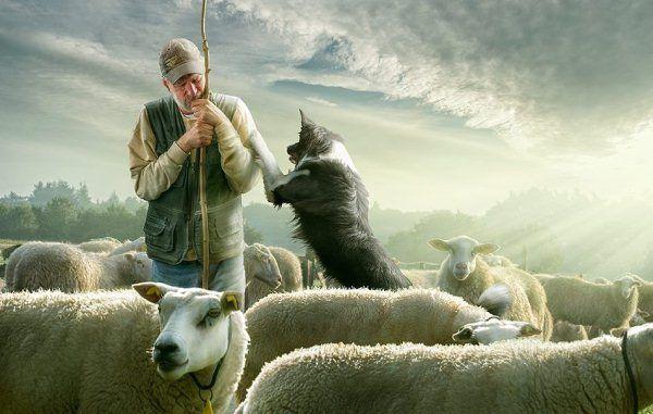 adrian-sommeling-01-10-20122