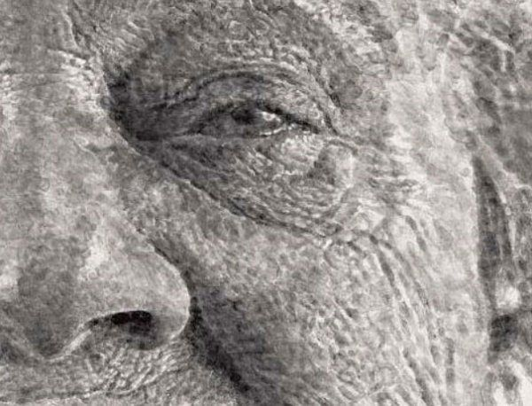 realistic-finger-painting-chuck-close-1