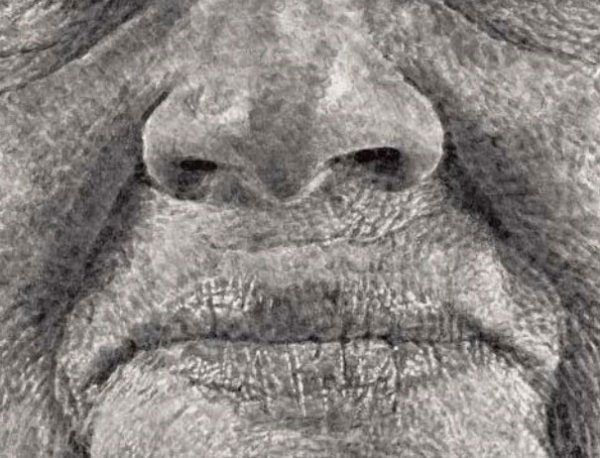 realistic-finger-painting-chuck-close-2